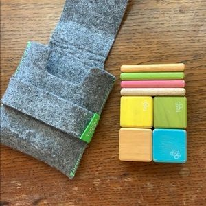 Magnetic Tegu blocks in felt case